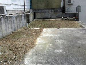草引きアフター